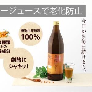 【鉄分・栄養素補給】サジージュースの500円お試しトライアル!サジーの効果とおすすめの理由